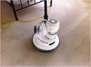 Pet Unine Cleaning Procedure