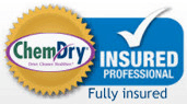 insured professional