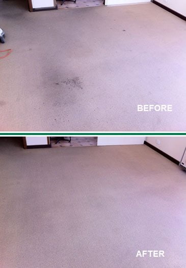 Stain Carpet Cleaning Before & After
